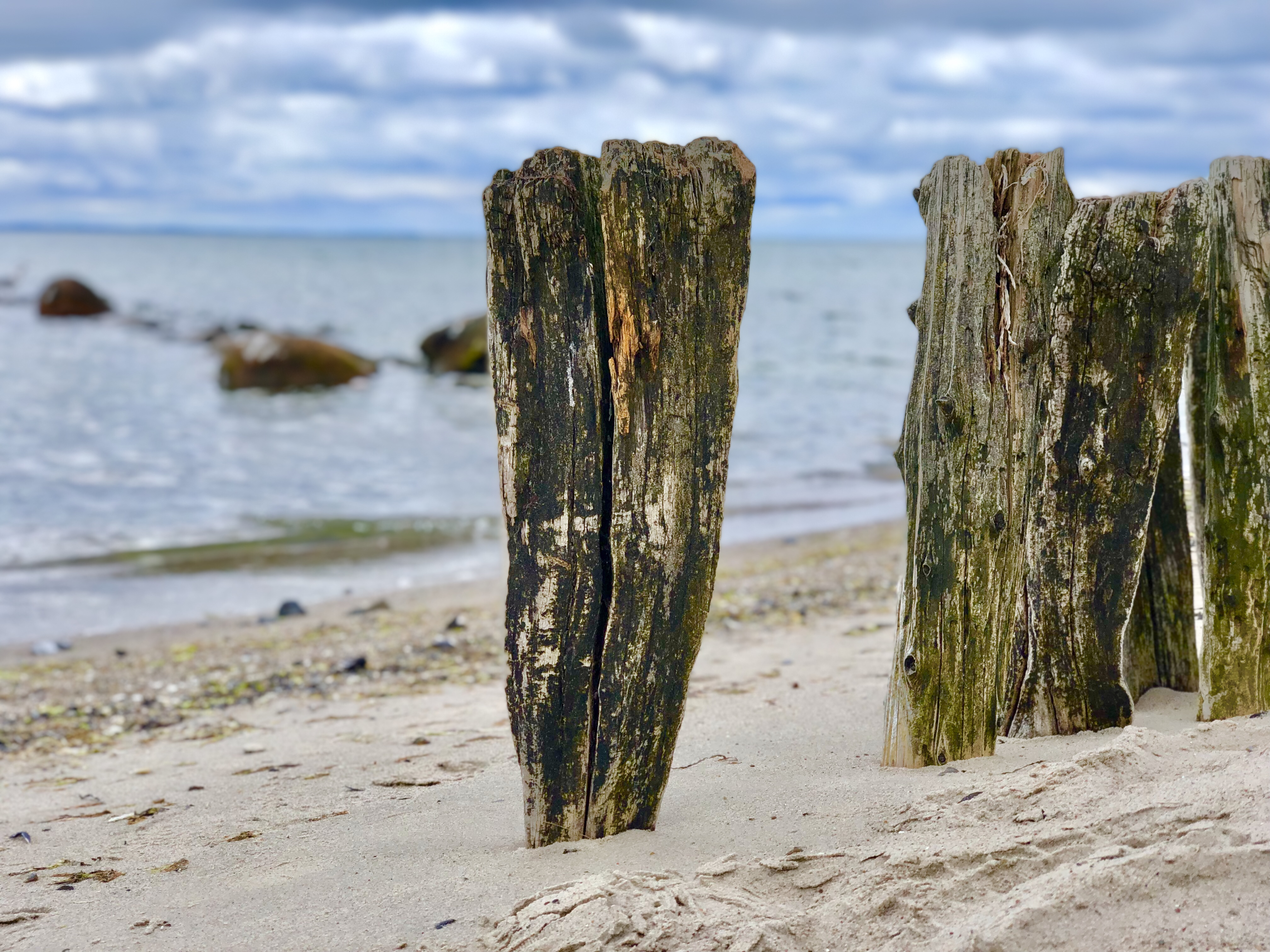 Ostsee pur